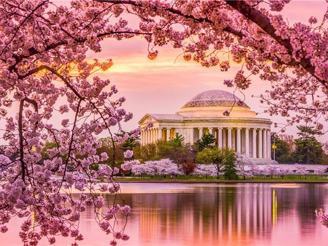 美国|华盛顿